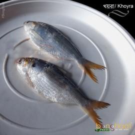 Khoira Fish (Maach) 1KG (Cleaned)