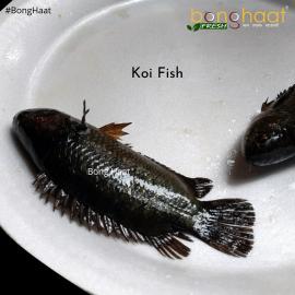 Koi Fish (Maach) Big Size 1 KG (Cut and Cleaned)