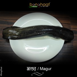 Magur Fish (Maach) 1KG (Cut and Cleaned)