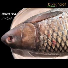 Mrigal Fish (Maach) 1KG (Cleaned and Cut)
