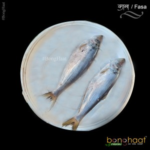 Fyasha Fish (Maach) 1KG (Cut and Cleaned)