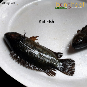 Koi Fish (Maach) Big Size 1 KG (Cut and Cleaned)