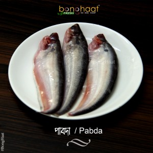 Pabda Fish (Maach) 1 KG (Cut & Clean)